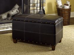 Picture of HIDDEN TREASURES  Trunk-Black